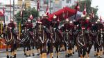 En 3 años han muerto 47 caballos de regimiento Mariscal Nieto - Noticias de ejército peruano
