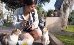 La impresión de un turista al visitar el Parque Kennedy (VIDEO)