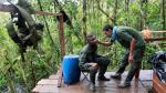 Colombia: ¿Y qué pasará ahora con los guerrilleros de las FARC? - Noticias de movimiento de contenedores