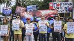 Caza de delfines por parte de Japón sigue indignando al mundo - Noticias de caza de delfines