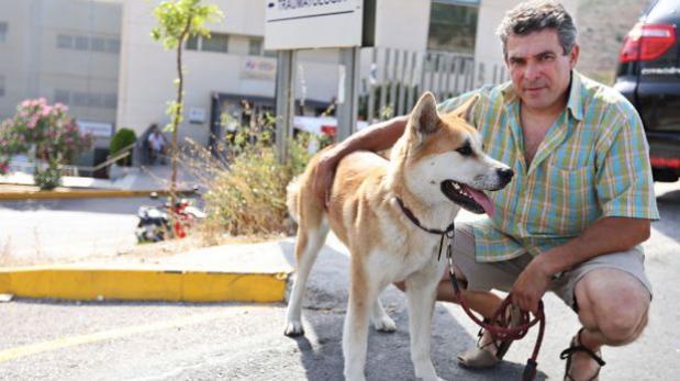 Una perra se niega a abandonar el hospital donde está su dueña