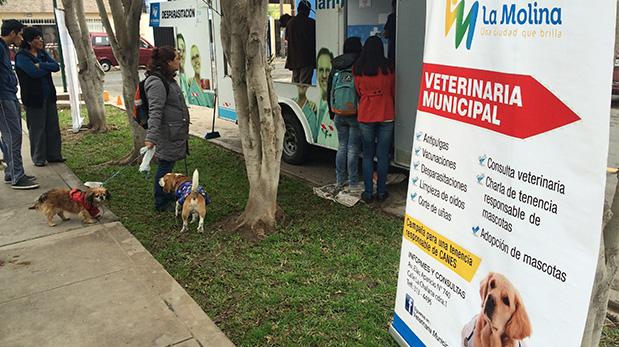 Los vecinos se acercan para hacer consultas y para que sus mascotas reciban servicios como vacunas, corte de uñas y limpieza de orejas.