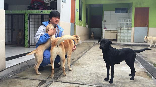 El médico veterinario Pedro Ospina dirige este consultorio desde enero de este año.