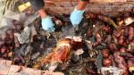 Pachamanca, un plato ancestral vigente en nuestra gastronomía - Noticias de chincha