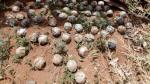 Laos, el país sobre el que llovieron 280 millones de bombas - Noticias de armas mortales