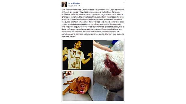 [Foto] Dueños de perros atacados vuelcan a redes su indignación