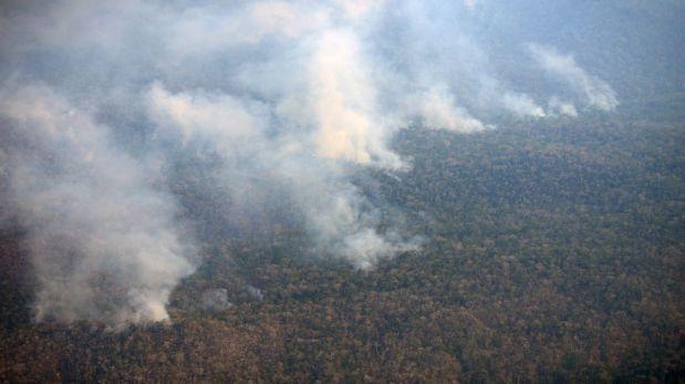 Satipo: Parque Nacional de Otishi en riesgo por voraz incendio
