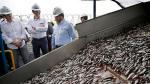 Empresas chinas interesadas en sector pesquero local - Noticias de líderes empresariales