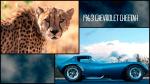 Diseño salvaje, 17 autos inspirados en animales - Noticias de lotus elise
