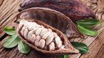 Las maravillas del magnesio y en qué alimentos encontrarlo - Noticias de oncosalud