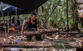 Las FARC construyen un parque temático en Colombia