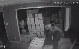 Cámaras de seguridad captan robo frustrado a vivienda [VIDEO]