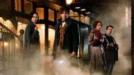 Mira el nuevo tráiler de precuela de Harry Potter