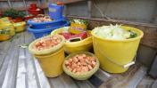 FAO: lo más dramático en inseguridad alimentaria aún no llega