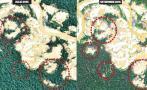Madre de Dios: Minería ilegal en Tambopata arrasa 450 hectáreas