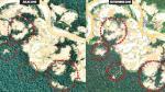 Madre de Dios: Minería ilegal en Tambopata arrasa 450 hectáreas - Noticias de mayor pnp