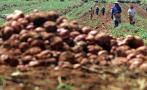 El mercado de fertilizantes mueve 1,1 mlls. de toneladas