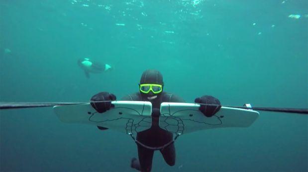 """El nado junto a orcas se perfila como el """"mejor video"""" de GoPro"""