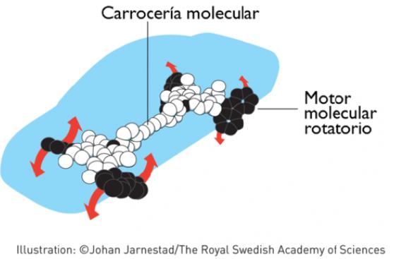 ¿Por qué las máquinas moleculares ganaron el Nobel de Química?