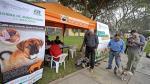 Uso de microchip en canes será obligatorio en Surco - Noticias de leonardo cruz