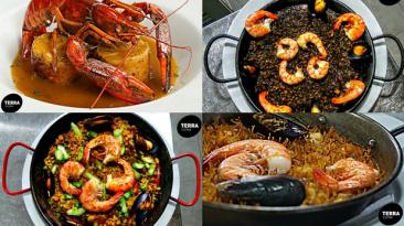 Terra Cuina: lee aquí la crítica gastronómica de Ignacio Medina