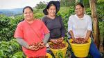 Sierra y Selva Exportadora generó ventas por S/ 320 mlls. - Noticias de alfonso velasquez tuesta
