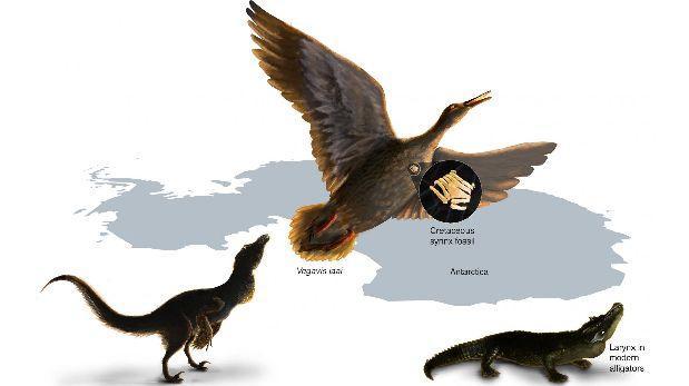 Los dinosaurios no cantaban como las aves