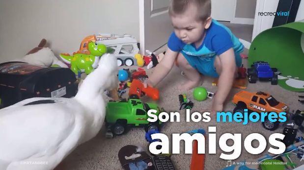 """Bebe """"adopta"""" a un pato y lo hace su amigo de aventuras [VIDEO]"""