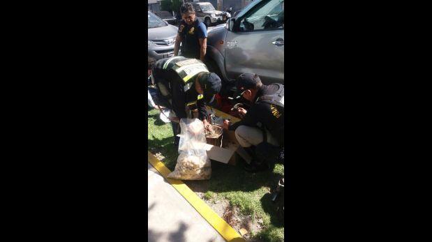 Arequipa: encuentran droga oculta en moderna camioneta