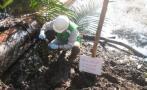 Loreto: OEFA inicia investigaciones ante derrame de petróleo