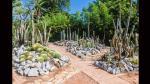 Belleza carioca: recorre el Jardín Botánico de Río de Janeiro - Noticias de viajes a brasil