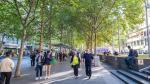 Tres motivos por los que debes vivir en una ciudad con árboles - Noticias de libro de pases