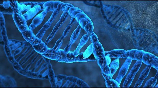 No todas las mutaciones genéticas son malas