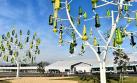 Una simple brisa podrá iluminar toda tu casa con este árbol