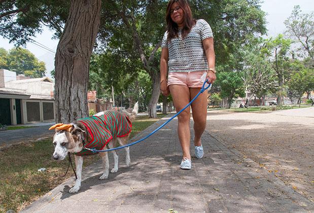 [Foto] 5 consejos para un paseo tranquilo