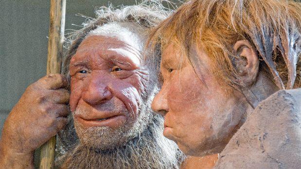 La evolución eliminó genes neandertales del genoma humano