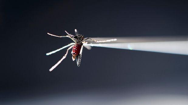Expertos logran crear un escudo contra zika que protege al feto