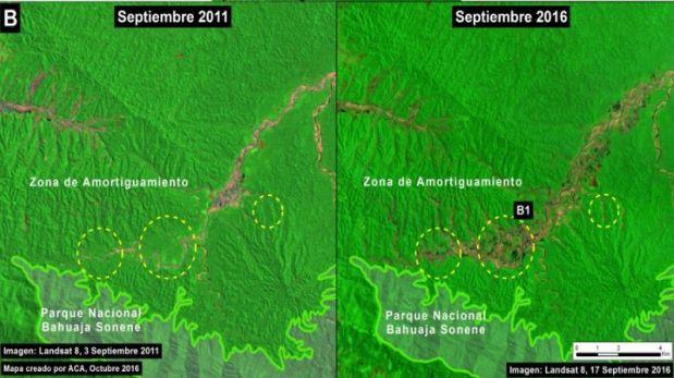 Imágenes tomadas en setiembre de 2011 (izquierda) y setiembre de 2016 (derecha) del Alto Malinowski (zona de amortiguamiento del Parque Nacional Bahuaja Sonene). (Crédito: USGS/NASA)