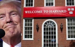 El plan de Harvard contra deportaciones de estudiantes latinos