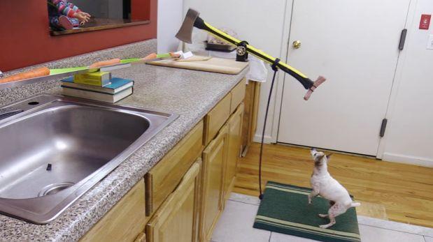 YouTube: esta es la manera más tonta de hornear un pavo