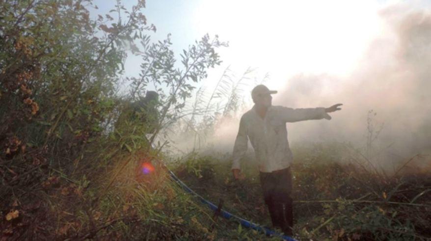 Incendio forestal en Cajamarca. (Foto: Andina)