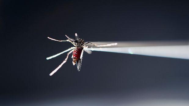 La primera vacuna contra el dengue se comercializará en el país