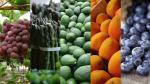 Seis productos impulsarán las agroexportaciones al 2021 - Noticias de carlos zamorano