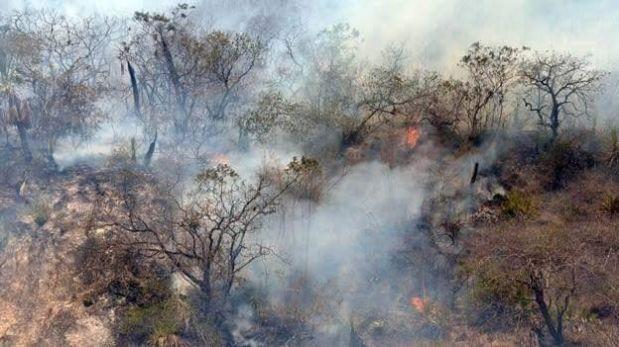 Minagri: Se ha controlado 37 de 43 incendios forestales