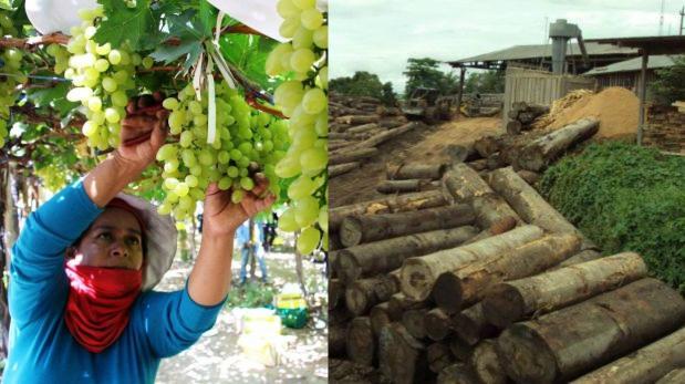 Agroexportación y sector forestal: La historia de dos sectores