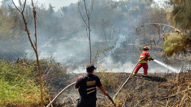 """""""Fuego de troncos"""", por José Carlos Requena"""