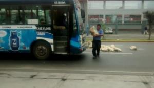 Detuvieron tránsito para llevarse bolsas de cemento de la pista
