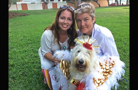 Perrita adoptada enterneció con su ángel navideño