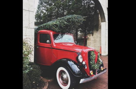 10 divertidos autos que se contagiaron de la Navidad