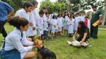 Taller de 'minivets' educará sobre cuidado de mascotas - Noticias de ordenanza municipal